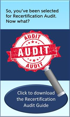 AACE Audit Guide